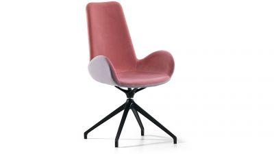 """Kėdė """"Dalia PA MX TS"""""""