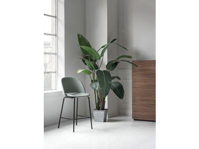 """Pusbario/Baro kėdė """"Polo Covered"""""""